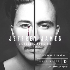 Cold Blood (Jeffrey James Acoustic Version) - Tungevaag & Raaban,Jeffrey James