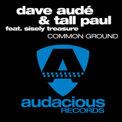 Common Ground - Sisely Treasure, Dave Audé