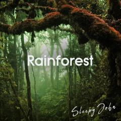 Rainforest - Sleep & Nature Sounds - Sleepy John
