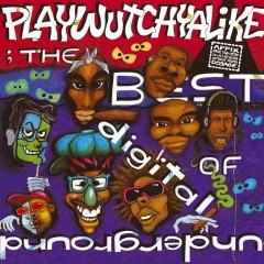 The Best Of Digital Underground: Playwutchyalike - Digital Underground