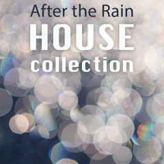 After the Rain - Various Artists