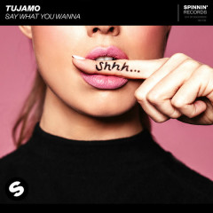 Say What You Wanna (Single) - Tujamo
