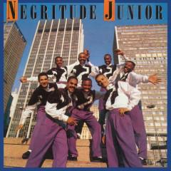 Natural - Negritude Junior
