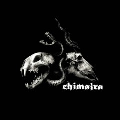 Chimaira Bonus Disc (Digital Bundle) - Chimaira