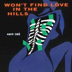 Won't Find Love in the Hills - Amir Obe