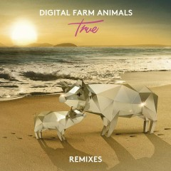True (Remixes) - Digital Farm Animals
