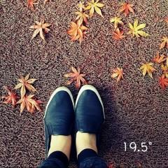 [19.5] (Single)