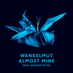 Almost Mine (Radio Edit) - Wankelmut,Charlotte OC