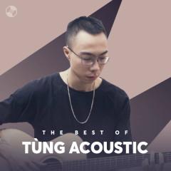 Những Bài Hát Hay Nhất Của Tùng Acoustic