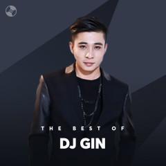 Những Bài Hát Hay Nhất Của DJ Gin