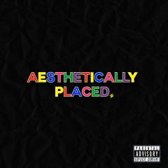Aesthetically Placed - Dave Steezy