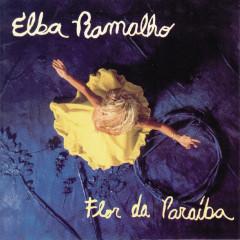 Flor da Paráiba - Elba Ramalho