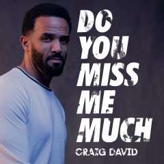 Do You Miss Me Much - Craig David