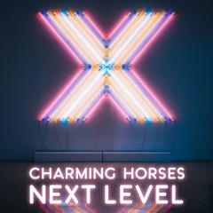 Next Level - Charming Horses