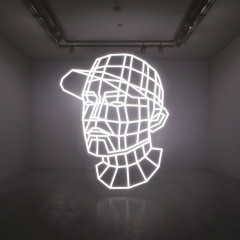 Reconstructed : The Best Of DJ Shadow (Deluxe Edition) - DJ Shadow