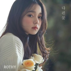 Blossom Flower (Single) - Rothy
