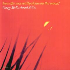 Does The Sun Really Shine On The Moon - Gary McFarland