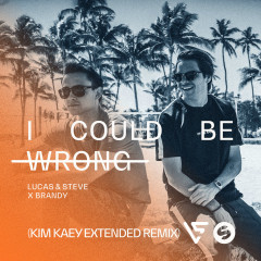 I Could Be Wrong (Kim Kaey Extended Remix) - Lucas & Steve, Brandy