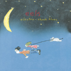 Electro-Shock Blues - Eels