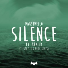 Silence (Tiësto's Big Room Remix)