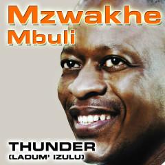 Thunder - (Ladum' Izulu) - Mzwakhe Mbuli