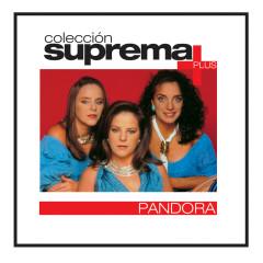 Coleccion Suprema Plus- Pandora - Pandora