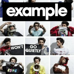 Won't Go Quietly - Example