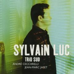 Trio sud (feat. André Ceccarelli & Jean-Marc Jaffe) - Sylvain Luc, André Ceccarelli, Jean-Marc Jaffe
