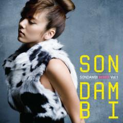 SonDamBi Remix Vol1. - Son Dam Bi