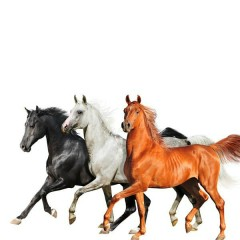 Old Town Road (Diplo Remix) - Lil Nas X, Billy Ray Cyrus, Diplo
