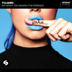 Say What You Wanna (The Remixes) - Tujamo