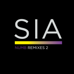 Numb Remixes 2 - Sia