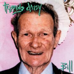 Bill - Tripping Daisy
