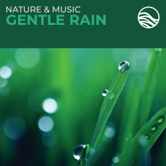 Nature & Music: Gentle Rain - David Arkenstone