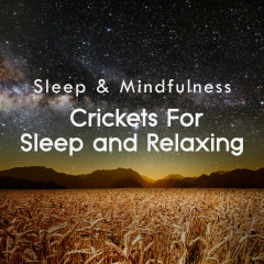 Crickets for Sleep and Relaxing (Sleep & Mindfulness) - Sleepy Times, Nature Ambience, Night Sounds
