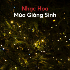 Nhạc Hoa Mùa Giáng Sinh - Various Artists
