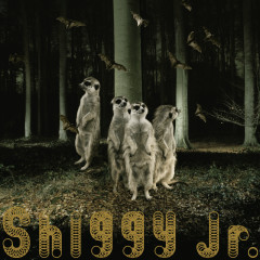 Ghost Party - Shiggy Jr.
