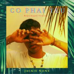 Có Phải Yêu (Repackaged Version) - Jackie Njine