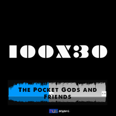 The Pocket Gods & Friends 100 X 30 EP - Various Artists