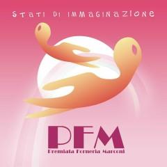 Stati Di Immaginazione - Premiata Forneria Marconi