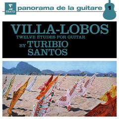 Villa-Lobos: 12 Études for Guitar, W235 - Turibio Santos
