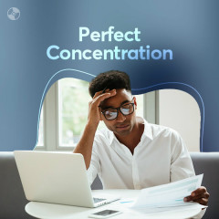 Perfect Concentration - Various Artists
