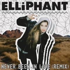 Never Been In Love (Remixes) - Elliphant