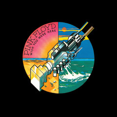 Shine On You Crazy Diamond, Pts. 1-6 (Live At Wembley 1974 (2011 Mix)) - Pink Floyd