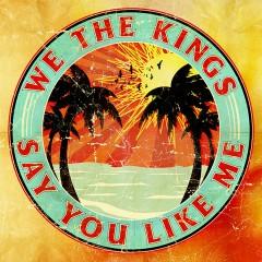 Say You Like Me - We The Kings