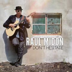 Don't Hesitate - Raul Midon