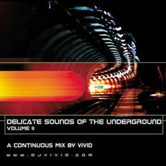Delicate Sounds Of The Underground Vol. ll Mixed by Vivid - ViViD