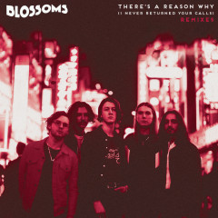 There's A Reason Why (I Never Returned Your Calls) (Remixes) - Blossoms