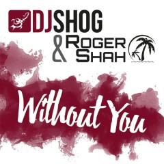 Without You - DJ Shog,Roger Shah