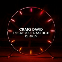 I Know You (Remixes) - Craig David,Bastille
